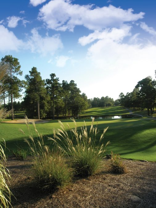 Warm up your Winter in Santee, SC!