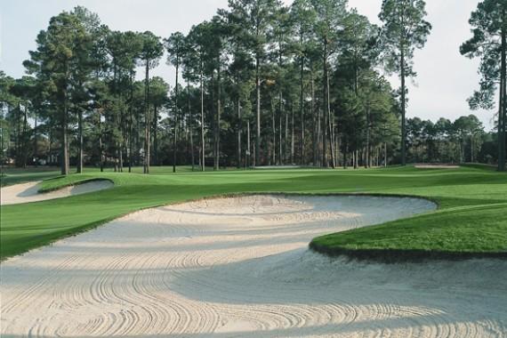 Santee Cooper Golf 2
