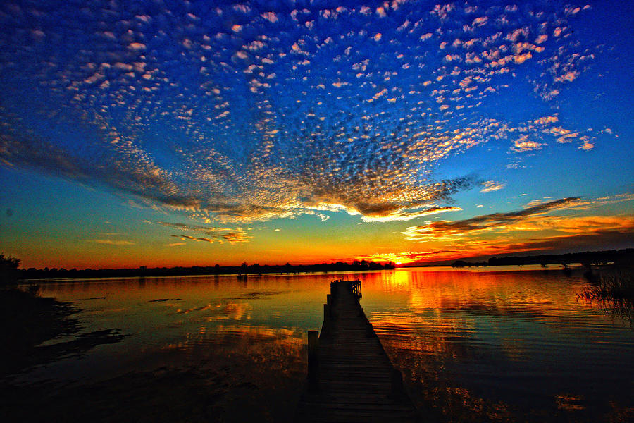 Explore Lake Marion & Moultrie
